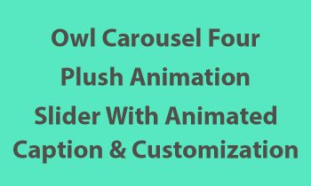 Owl Carousel Animation