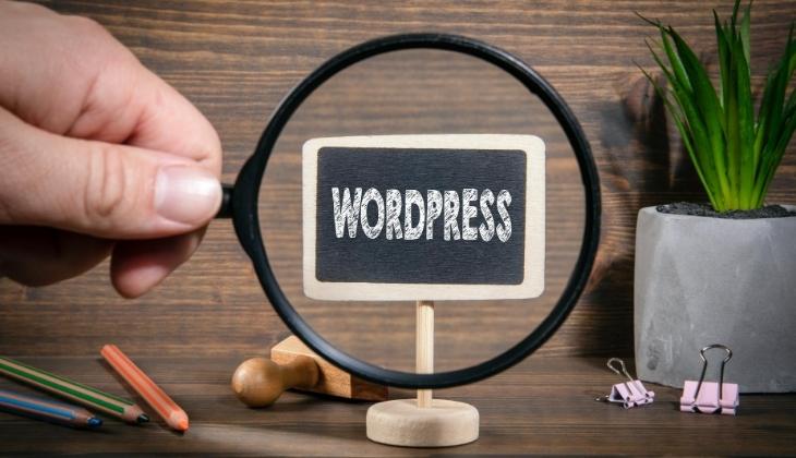 Top 20 wordpress website to buy