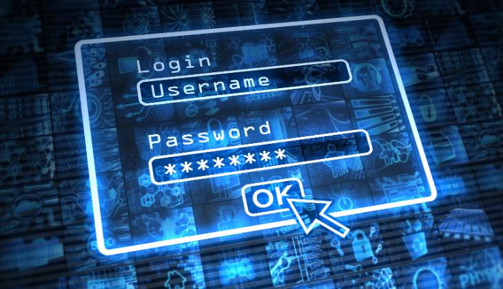 wordpress custom login form without password